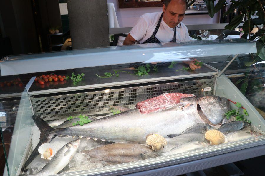 Frischer Yellowfin Tuna!